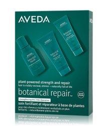 Aveda Botanical Repair Haarpflegeset