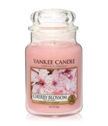 Yankee Candle Housewarmer Cherry Blossom Duftkerze