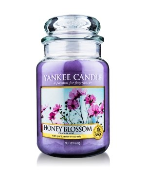 yankee candle housewarmer honey blossom jar duftkerze online bestellen flaconi. Black Bedroom Furniture Sets. Home Design Ideas