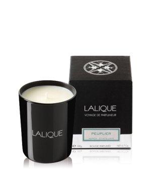 Lalique Peuplier Aspen  Duftkerze für Damen und Herren