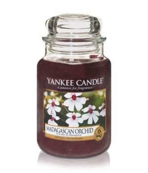 Yankee Candle Housewarmer Madagascan Duftkerze für Damen und Herren