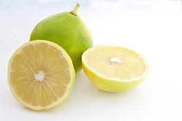 Bergamotte Früchte