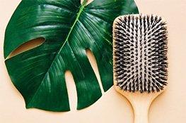 Haarbürsten bei flaconi