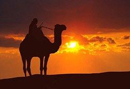 Orientalische Düfte entführen in ferne Welten