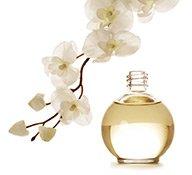 Parfumflakon mit Blüte