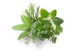 Kräuter wie Minze und Thymian wurden damals zur Herstellung von Parfüm verwendet