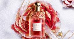 Rote Rose mit Aqua Allegoria Flakon